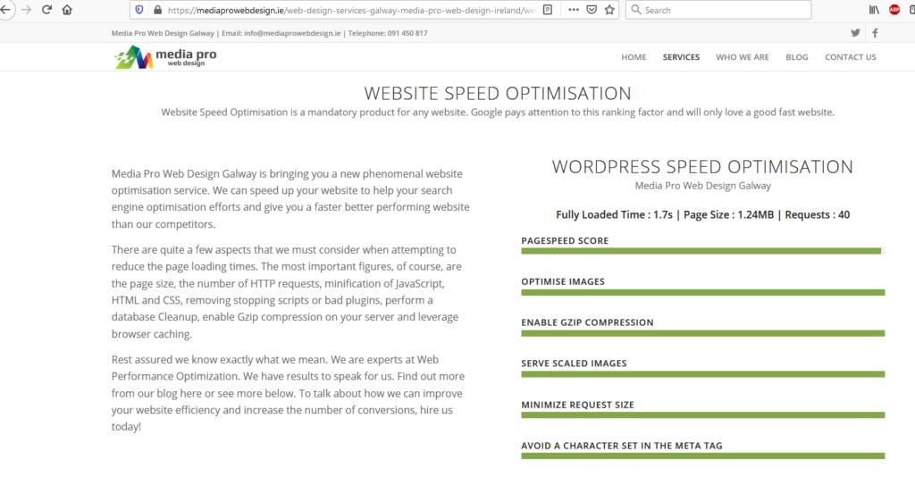 Website optimization promises.